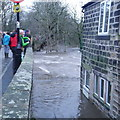SE2336 : Extreme flood on the River Aire, from Newlay Bridge (2) by Rich Tea