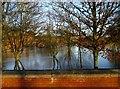 SE7871 : River  Derwent  in  flood  at  Malton  27th  Dec  2015  (5) by Martin Dawes