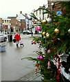 SO5924 : Ross-on-Wye's Christmas tree, 2015 by Jonathan Billinger