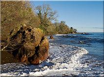 NH7358 : High Tide at Rosemarkie Beach by Julian Paren