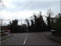 TL1314 : Avenue St.Nicholas, Harpenden by Adrian Cable
