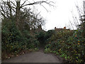 TL1214 : Path to Rothamsted Avenue by Adrian Cable