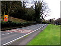 SO8400 : Reduce speed now on the A46, Nailsworth by Jaggery