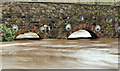 J3268 : The Minnowburn in flood, Belfast - December 2015(1) by Albert Bridge