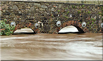 J3268 : The Minnowburn in flood, Belfast - December 2015(1) by Albert Bridge
