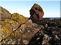 NT9166 : A sea stack at Coldingham Bay by Walter Baxter