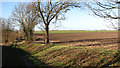 TG3910 : Farm track through fields west of Acle by Evelyn Simak