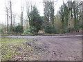 ST8186 : Bullpark Wood by Virginia Knight