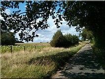 TQ4140 : Lane by Barry Hunter