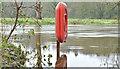 J3067 : The Lagan in flood, Drumbeg (January 2016) by Albert Bridge