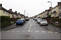 ST3090 : Graig Park Lane, Malpas, Newport by Jaggery