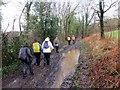 SN0414 : Llwybr Slebech Path by Alan Richards