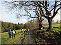 SN0214 : Llwybr Caniataol Parc Slebech Park Permissive Path by Alan Richards