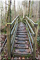 NX0981 : Footbridge over the Kilphin Burn by Billy McCrorie