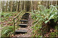 NX0881 : Steps on Path to Ballantrae by Billy McCrorie