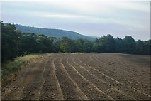 SK2572 : Ploughed field by the River Derwent by N Chadwick
