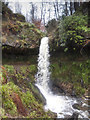 NO2306 : Waterfall, Maspie Den by William Starkey