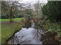 TQ1469 : Channel in Waterhouse Woodland Garden by Hugh Venables