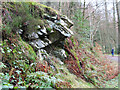 SD3493 : Rocky outcrop, Grizedale Forest by Kate Jewell