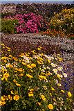 NU1341 : Walled garden, Lindisfarne Castle by Ian Capper