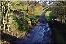 SE7296 : Hanging Stone Lane by Ian Taylor