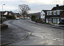 ST3091 : Almond Drive east of Harding Avenue, Malpas, Newport by Jaggery