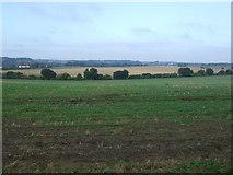 TM0857 : Farmland near Hill Farm by JThomas