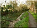 SK9804 : Sinc Stream and stepping stones by Alan Murray-Rust