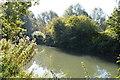 SU4266 : Kennet & Avon Canal by N Chadwick
