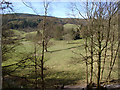SD3394 : View from Ridding Wood, Grizedale Forest by Kate Jewell