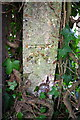 SU4197 : Benchmark on Digging Lane fence post by Roger Templeman