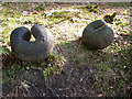 """SD3394 : """"Spores"""", Grizedale Forest sculpture by Kate Jewell"""