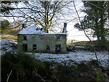 H6058 : Ruined cottage, Ballynasaggart by Kenneth  Allen