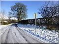 H5164 : Wintry along Church Road, Gortaclare by Kenneth  Allen