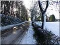 H5165 : Wintry along Church Road by Kenneth  Allen