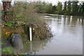 SP2965 : Level gauge by the River Avon, southeast Warwick 2016-01-07 by Robin Stott