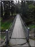 NU0702 : Cragside: The Iron Bridge by Anthony Foster