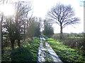 TA1944 : Hornsea Rail Trail near Grange Farm by JThomas