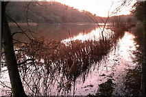 NT5682 : Winter at the loch by Keith Burns