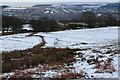 SO1901 : Pasture under snow, Pentrapeod by M J Roscoe