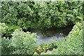 SK1373 : River Wye by N Chadwick