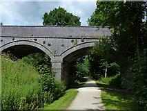 SK1750 : Bridge crossing the Tissington Trail by Mat Fascione
