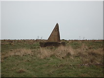 TA1281 : Stone marker for the Wolds Way Footpath by JThomas