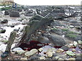 TF6741 : Whales blood and the wreck of The Sheraton, Hunstanton by Richard Humphrey