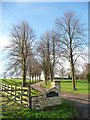SE4635 : Entrance to Coldhill Farm by Christine Johnstone