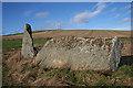 NJ7324 : Balquhain Recumbent Stone Circle (14) by Anne Burgess
