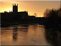 SO8454 : Worcester Cathedral at dawn by Philip Halling