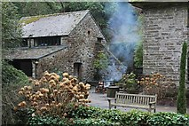 SH7972 : Outdoor heating in the Dell at Bodnant Garden by Richard Hoare
