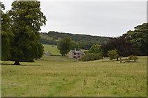 SK1971 : Near Little Longstone by N Chadwick