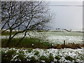 H4868 : Wintry at Camowen by Kenneth  Allen